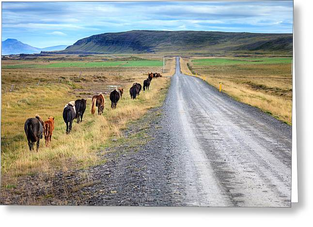 Gravel Road Greeting Cards - Following the country road Greeting Card by Alexey Stiop