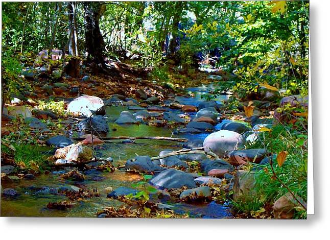 Dappled Light Greeting Cards - Following the Creek Greeting Card by Marcia Breznay