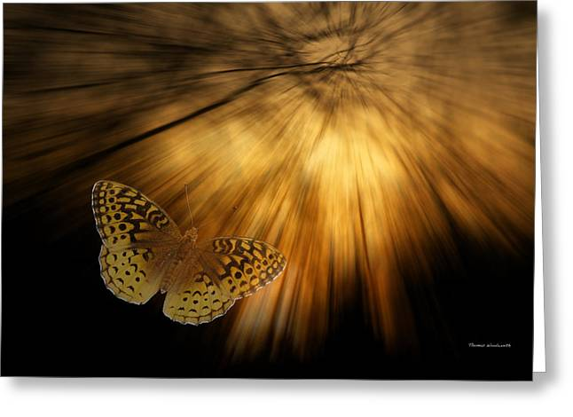 Central Illinois Greeting Cards - Following the Light Yellow Butterfly Greeting Card by Thomas Woolworth