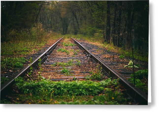 Thru Greeting Cards - Following The Tracks Greeting Card by Karol  Livote