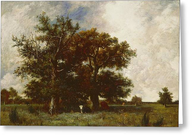 Fontainebleau Greeting Cards - Fontainebleau Oak Greeting Card by Jules Dupre
