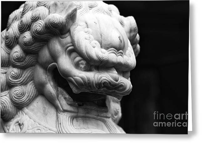 Dog Pics Greeting Cards - Foo Dog in Chinatown Greeting Card by John Rizzuto