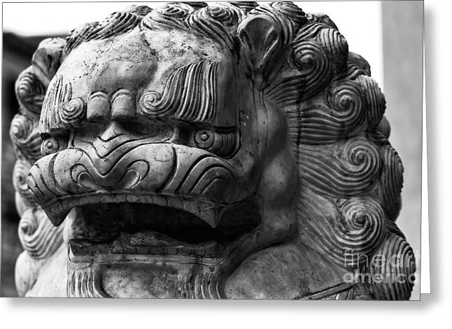 Statue Portrait Photographs Greeting Cards - Foo Dog Portrait Greeting Card by John Rizzuto