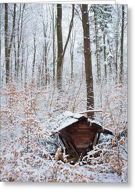 Winterly Forest Greeting Cards - Food point for animals in the winterly forest Greeting Card by Matthias Hauser
