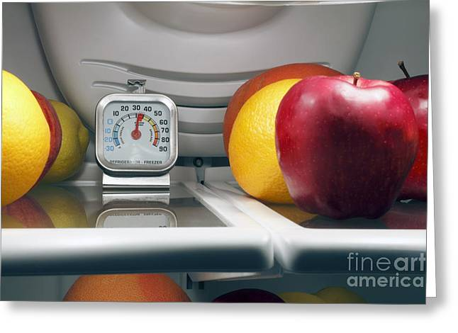 Food Safe Greeting Cards - Food Temperature Greeting Card by Lee Serenethos