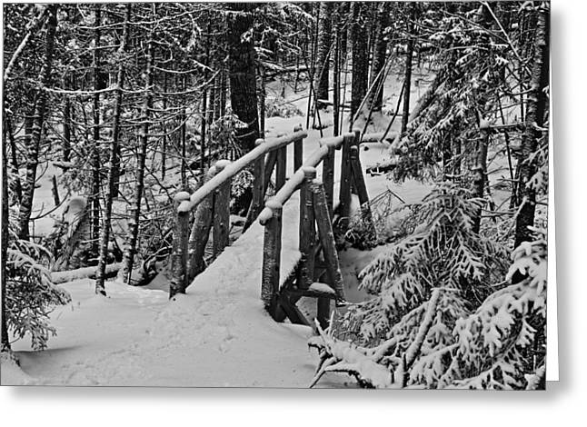 Maine Islands Greeting Cards - Foot Bridge in Winter Greeting Card by David Rucker