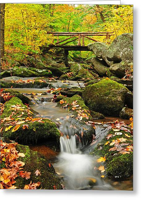 Fall Photos Greeting Cards - Foot Bridge- Macedonia Brook State Park Greeting Card by Thomas Schoeller