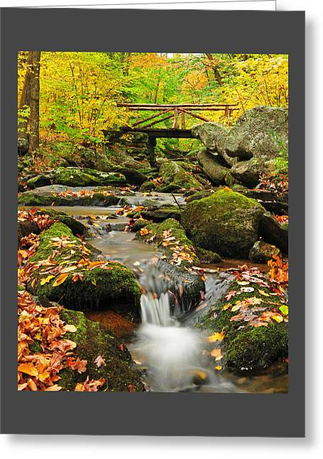 Autumn Scenes Greeting Cards - Foot Bridge- Macedonia Brook State Park Greeting Card by Thomas Schoeller
