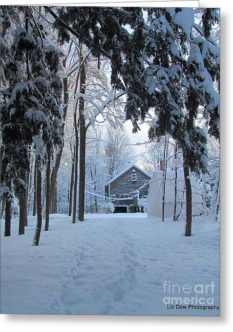 Winter In Maine Greeting Cards - Foot Prints in the Snow Greeting Card by Elizabeth Dow