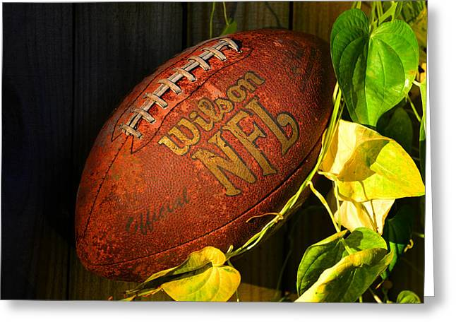 National Football League Greeting Cards - Football on the fence Greeting Card by David Lee Thompson