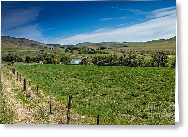 Haybale Greeting Cards - Foothill Ranch Greeting Card by Robert Bales