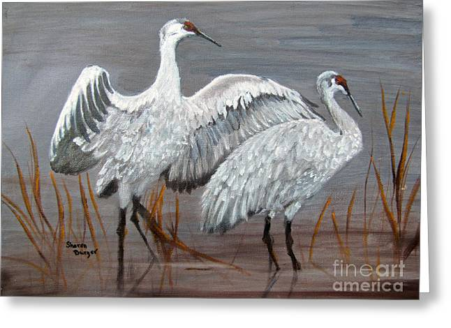 Sandhill Cranes Paintings Greeting Cards - Footloose Greeting Card by Sharon Burger