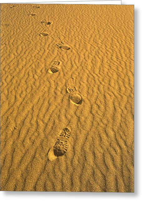 Sand Dunes National Park Greeting Cards - Footprints, Death Valley National Park Greeting Card by Panoramic Images