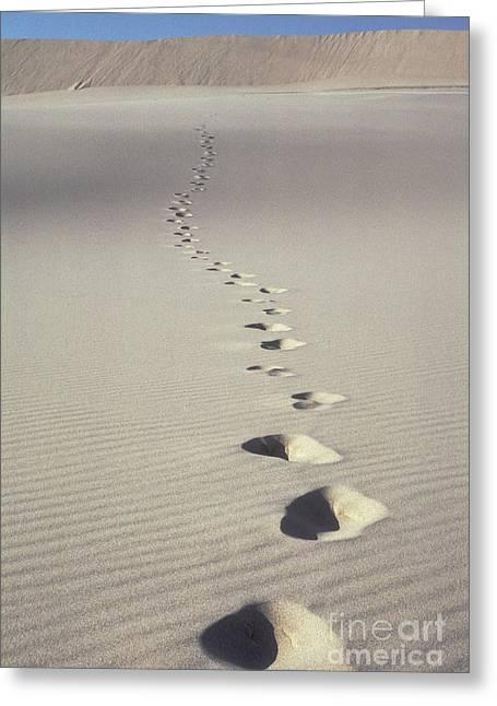 Sanddunes Greeting Cards - Footprints In Desert Sand Greeting Card by Ron Sanford