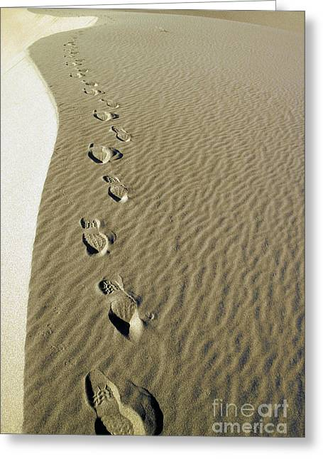 Temperature Greeting Cards - Footprints In Sand Greeting Card by Novastock
