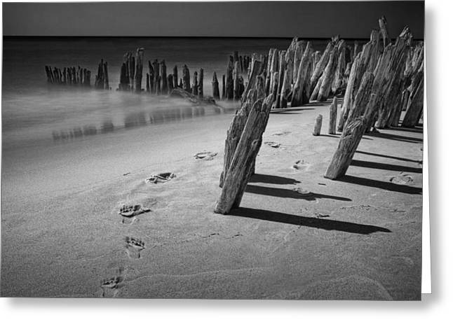 Ocean Art Photography Greeting Cards - Footprints in the Sand among the Pilings Greeting Card by Randall Nyhof