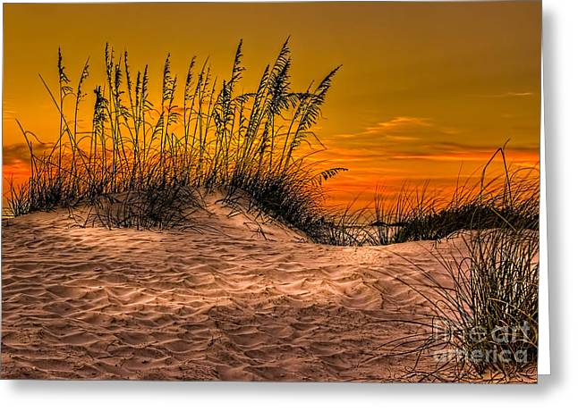 Dunes Greeting Cards - Footprints in the Sand Greeting Card by Marvin Spates
