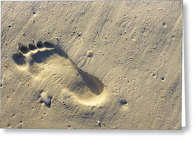 Footprints In The Sand Greeting Cards - Footprints In The Sands - Playa Del Carmen Greeting Card by Mark Tisdale