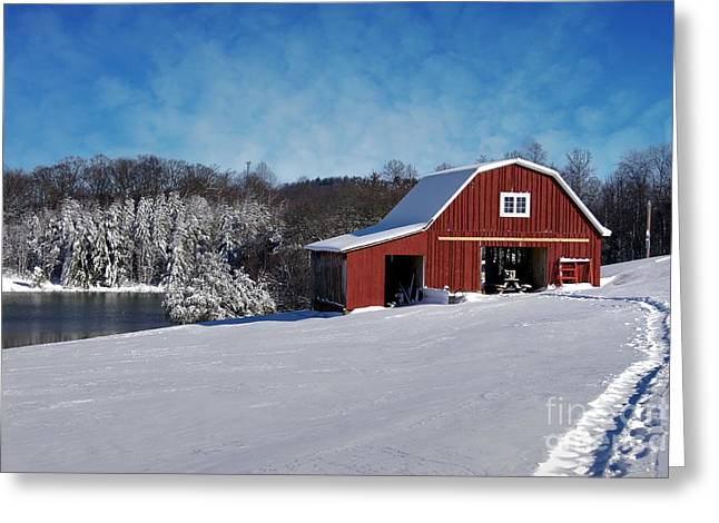 Snow-covered Landscape Greeting Cards - Footprints in the Snow Greeting Card by Benanne Stiens