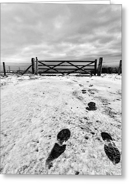 Snow Drifts Greeting Cards - Footprints in the snow Greeting Card by John Farnan
