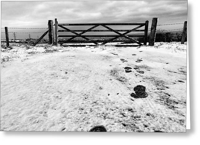 Footprints in the snow Greeting Card by John Farnan