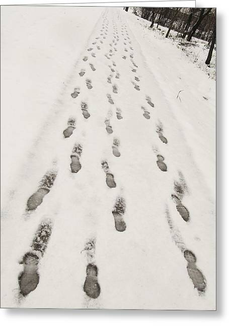 Mills Greeting Cards - Footprints in the Snow  Greeting Card by Marianna Mills