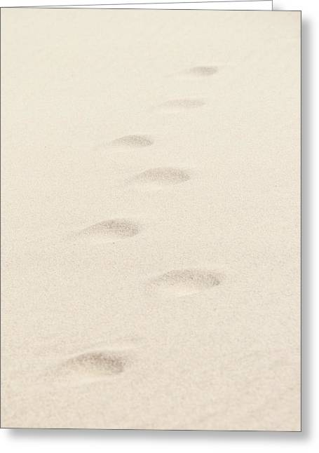 Footprints In The Wind Greeting Card by Vicki Jauron