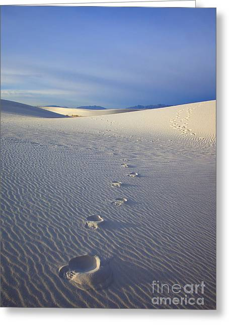 White Photographs Greeting Cards - Footprints Greeting Card by Mike  Dawson