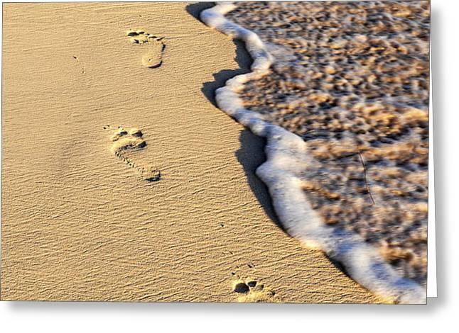 Footprints on beach Greeting Card by Elena Elisseeva