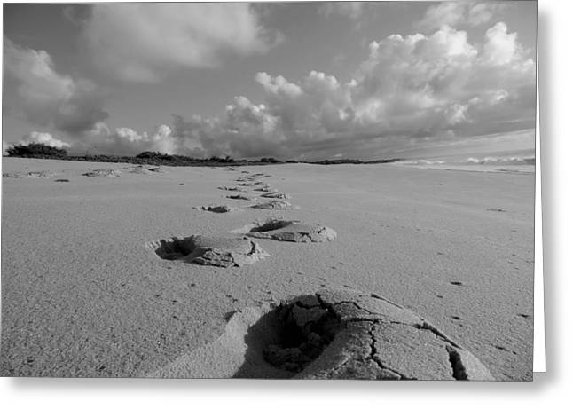 Ground Level Greeting Cards - Footprints on the Beach Greeting Card by Mountain Dreams