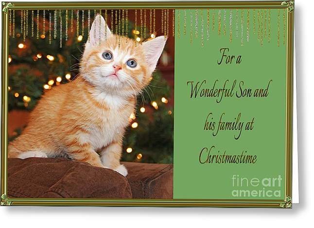 Cute Kitten Mixed Media Greeting Cards - For  a Wonderful Son and his family at Christmastime Card Greeting Card by Vickie Emms