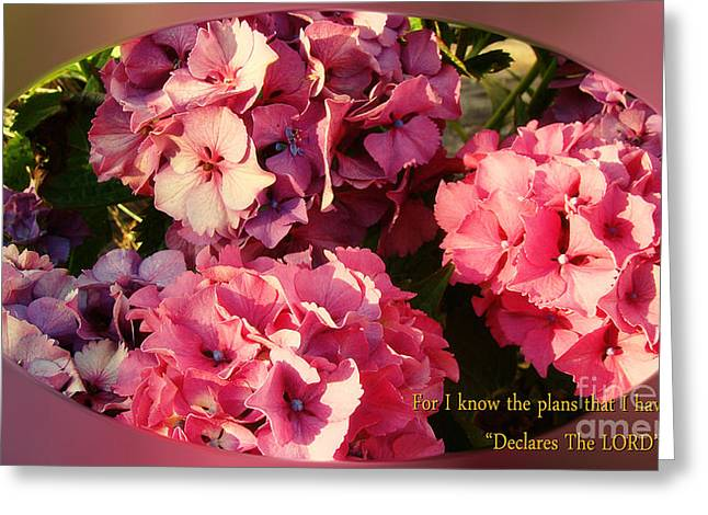 Crosswalk Digital Greeting Cards - For I Know The Plans Greeting Card by Beverly Guilliams
