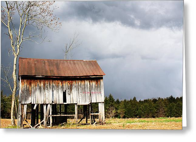 Tin Roof Greeting Cards - For Rent Greeting Card by JB Stran