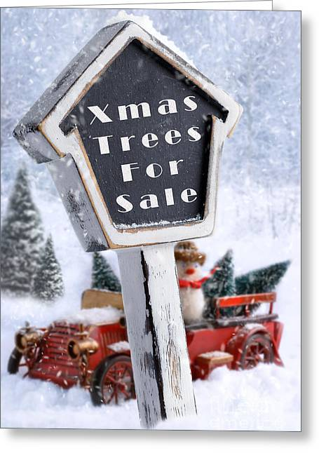 Snowball Greeting Cards - For Sale Sign Greeting Card by Amanda And Christopher Elwell