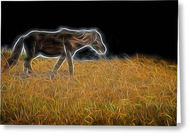 Lone Horse Greeting Cards - For The Hippy In All Of Us Greeting Card by Cindy Archbell