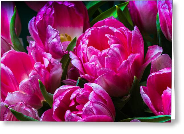 For You - Featured 3 Greeting Card by Alexander Senin