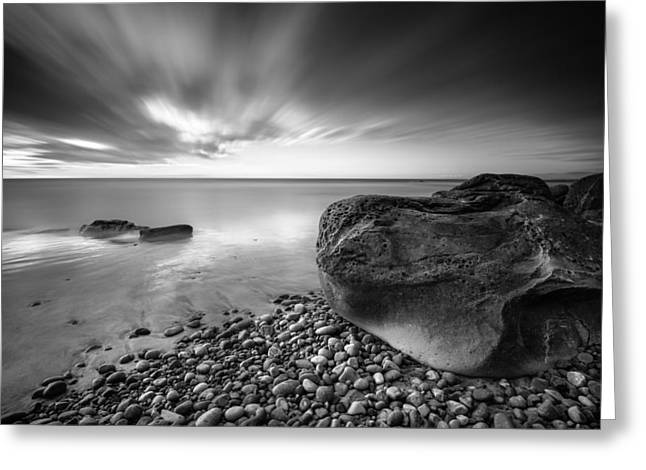 Coastal Preserve Greeting Cards - Force and Form Greeting Card by Alexander Kunz