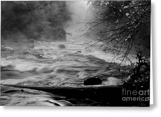 White River Greeting Cards - Forces of Nature Greeting Card by Iris Greenwell