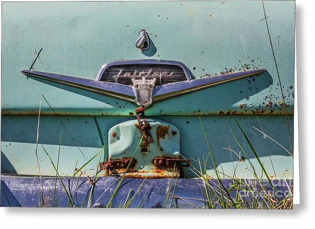 Rusted Cars Greeting Cards - Ford Fairlane Greeting Card by Ashley M Conger