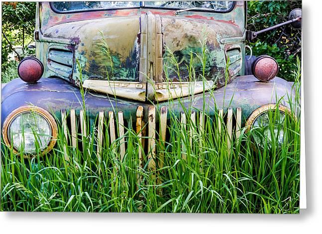Ford Field Of Dreams Greeting Card by Teri Virbickis