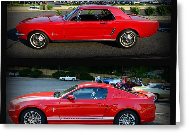Dealership Greeting Cards - Ford Mustang Old or New Greeting Card by Paul Ward