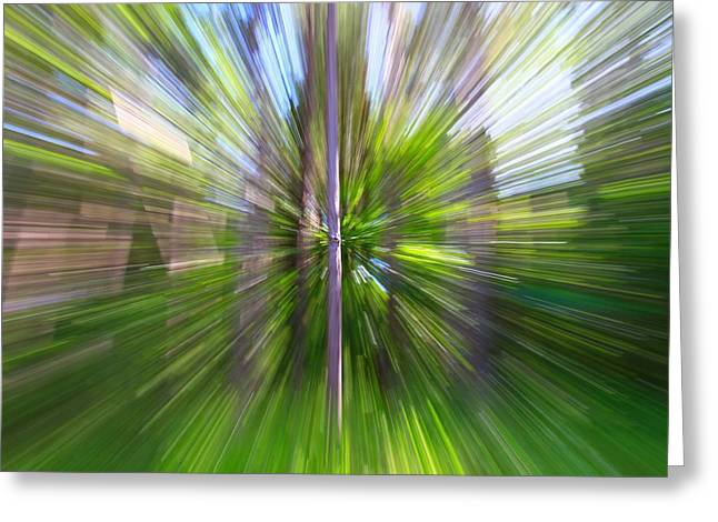 Lush Green Greeting Cards - Forest Abstract 2 Greeting Card by Dan Sproul