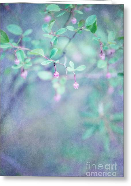 Forest Bells Greeting Card by Priska Wettstein