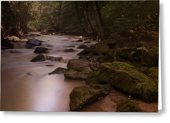 Deutschland Greeting Cards - Forest Creek Greeting Card by Miguel Winterpacht