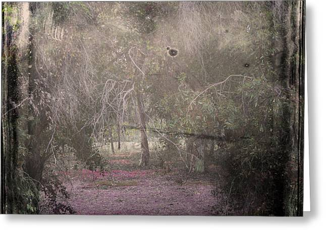 Blank Photo Greeting Cards - Forest Dream Greeting Card by Stylianos Kleanthous