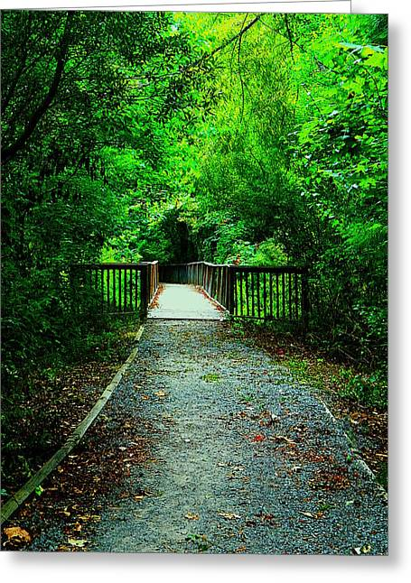 Forest Entrance Greeting Card by Ester  Rogers