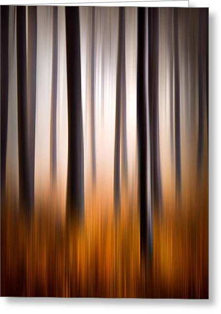 Western North Carolina Greeting Cards - Forest Essence Abstract Autumn Landscape Greeting Card by Dave Allen