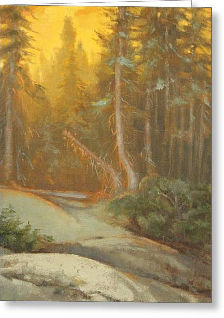 Gloaming Paintings Greeting Cards - Forest Evening...Sunset Greeting Card by Susan Gutting