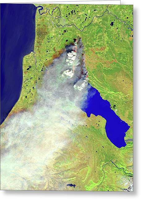 Forest Fire Greeting Card by Nasa Earth Observatory