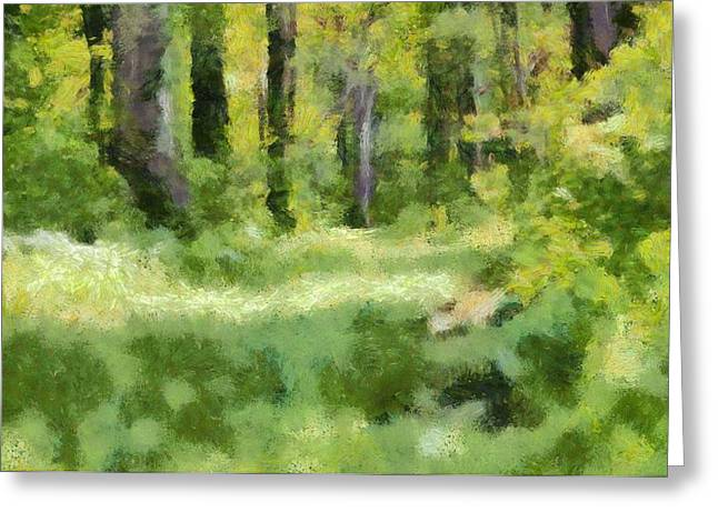 Escape Mixed Media Greeting Cards - Forest Floor In Summer Greeting Card by Dan Sproul